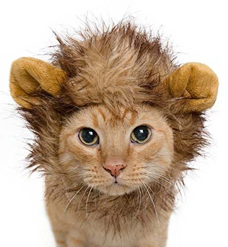 Lion Mane Costume for Cats & Dogs – Free Feathered Catnip Toy Included – Cute Halloween Pet Costume.