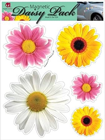 Amazoncom Daisy Flower Pack Magnet Automotive - Magnetic car decals flowers