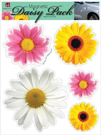 Daisy Flower Pack Magnet]()