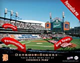 Detroit Tigers Team Stadium Print - Personlized Officially Licensed MLB Photo Print