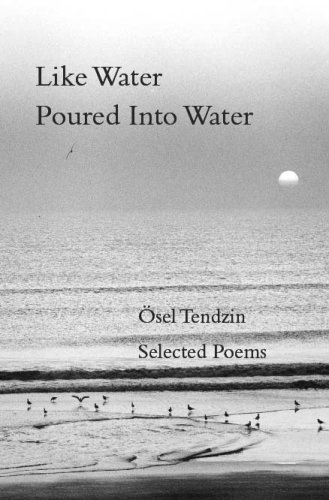 Download Like Water Poured Into Water pdf epub