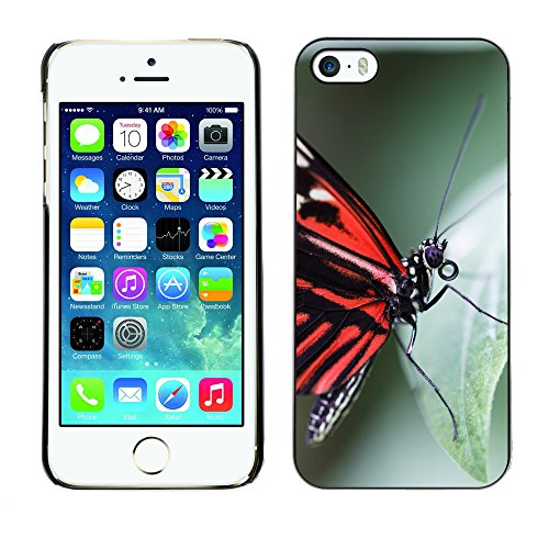 Premio Sottile Slim Cassa Custodia Case Cover Shell // F00009653 papillon // Apple iPhone 5 5S 5G