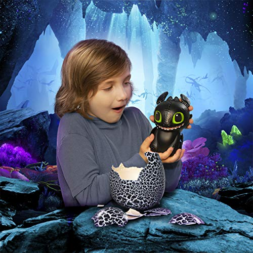 514PAdT7T9L - Dreamworks Dragons, Hatching Toothless Interactive Baby Dragon with Sounds, for Kids Aged 5 & Up