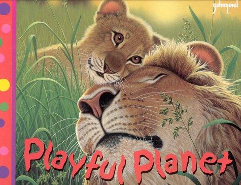 Playful Planet (Pop-Up Books) ebook