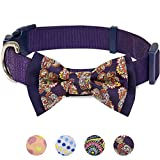 Blueberry Pet 4 Patterns Paisley Floral Prints Handmade Detachable Bow Tie Dog Collar in Dark Orchid, Small, Neck 12''-16'', Adjustable Collars for Puppies & Small Dogs