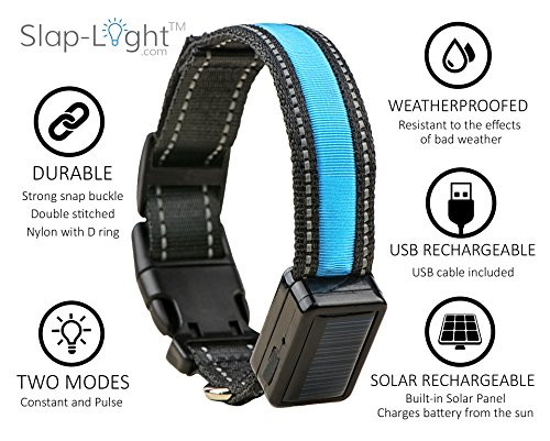 Slap-Light-LED-Dog-Collar-with-Quick-Release-Buckle-Solar-and-USB-Rechargeable-Available-in-4-Colors-3-Sizes-L-Blue