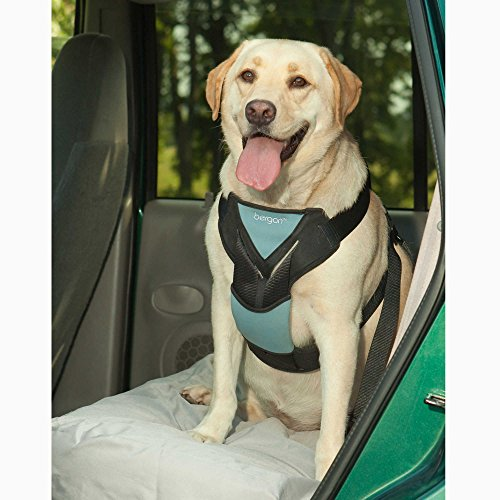 Bergan® Large Travel Safety Harness by Bergan