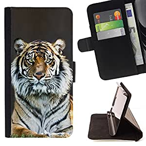 Momo Phone Case / Flip Funda de Cuero Case Cover - Tiger Stripes Piel Gris Naturaleza Animal Zoo - Samsung Galaxy S6 Edge Plus / S6 Edge+ G928