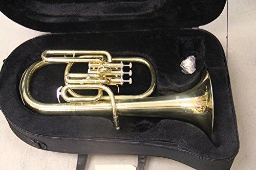 [해외]Rossetti 황동 알토 호른, Eb, 피스톤, 하드 쉘 케이스의 열쇠/Rossetti Brass Alto Horn, Key of Eb, Piston, Hardshell Case