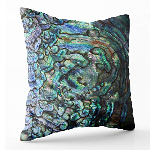Abalone Mop - Douecish Pillow Covers, Household Cushion Soft Home Sofa Decorative Throw Pillow Cases High Macro Blue Pearl Shell Abalone Double Printed 20X20 inches