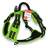 CUDDLY PET® Dog Harness No Pull Adjustable Pet Vest with Handle, for Small Medium Large Dogs (Medium, Green)