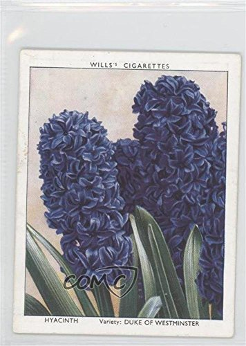Hyacinth (Trading Card) 1938 Wills Garden Flowers New Varieties - Tobacco [Base] #18