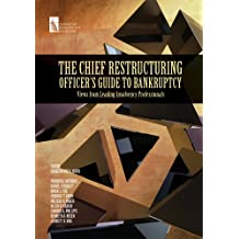 The Chief Restructuring Officer's Guide to Bankruptcy: Views from Leading Insolvency Professionals