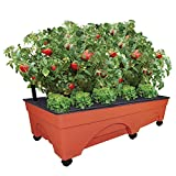 "Emsco Group Big City Picker Raised Bed Grow Box – Self Watering and Improved Aeration – Mobile Unit with Casters – Extra Large 48"" x 20"" Design"