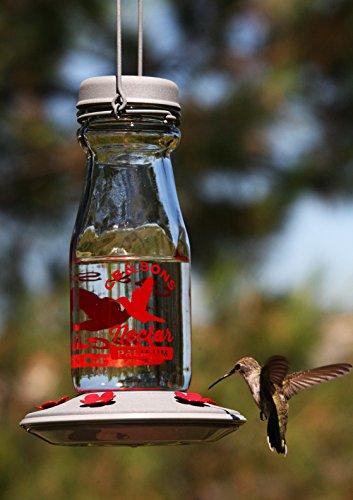 Buy place to hang hummingbird feeders