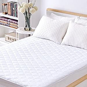 Sable Mattress Pad Protector, Waterproof Quilted Queen Size Topper with FDA Certified Hypoallergenic Down Alternative Fill, Antibacterial, Dust Mite Protection, Deep Pocket Fitted Skirt 16 Inch
