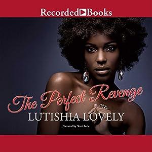 The Perfect Revenge Audiobook