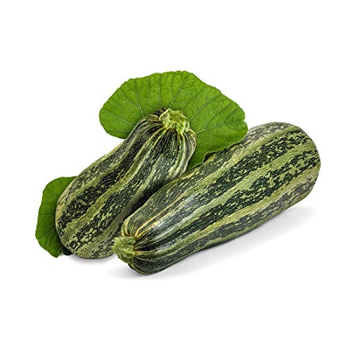 Cocozelle Zucchini Summer Squash Seeds, 30+ Premium Heirloom Seeds, Fantastic Addition to Your Home Garden! Delicious & Huge! (Isla's Garden Seeds),Non GMO, 90% Germination Rates, Highest Quality