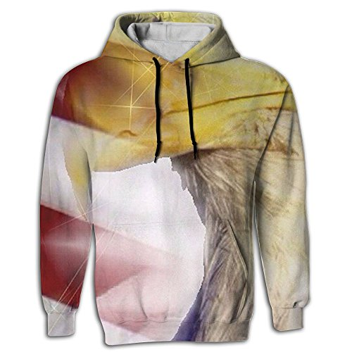 Discount SUN American Flag Animal Men's Novelty Big And Tall Long Sleeve Hoodie Kangaroo Pocket For Unisex Sweatshirt hot sale
