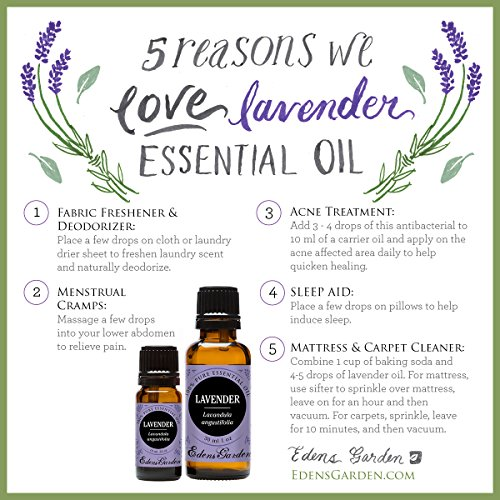 Lavender 100 Pure Therapeutic Grade Essential Oil by Edens Garden