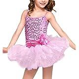 Girls Sequins Ballet Dress Gymnastics Dance Leotard Costume Kids Tutu Dancewear
