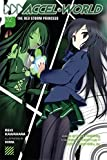 Accel World, Vol. 2: The Red Storm Princess - light novel