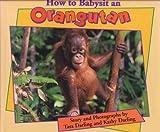 How to Babysit an Orangutan, Kathy Darling, 0802784666