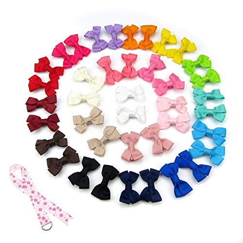 - Alfie Pet by Petoga Couture - Perrin Hair Clip 40-Piece Set for Dogs, Cats and Small Animals