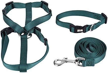 Decdeal - Ajustable Kit de Collar, Arnés y Correa de 1,2m para ...