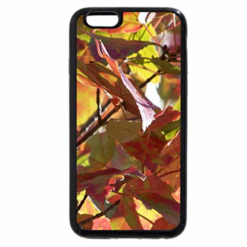 iPhone 6S / iPhone 6 Case (Black) A Falltime Forest