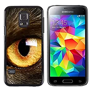 TECHCASE**Cubierta de la caja de protección la piel dura para el ** Samsung Galaxy S5 Mini, SM-G800, NOT S5 REGULAR! ** Cat Eye Orange Yellow Fur Pet Looking