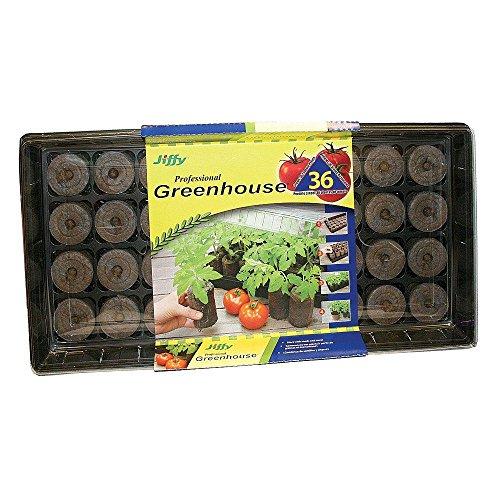 Ferry Morse/Jiffy Tomato Greenhouse (Ferry Morse Tomato Seed)