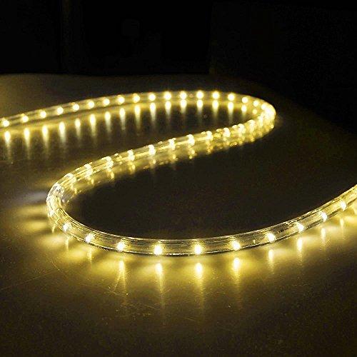 FOEERS 3M 10ft 110V Warm White Led Rope Light Outdoor Wedding Christmas Holiday Decoration Lights (Warm White) ()