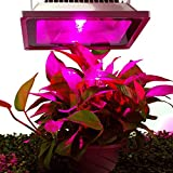 Esco Lite 30 Watt Plants Growing Led Lights indoor Bulbs waterproof for housing tomatoes hydroponics Greenhouse
