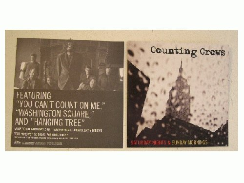 Counting Crows Poster Flat Band Shot And The Crowes