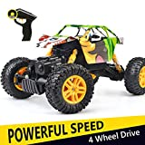 remote car motor - DOUBLE E 4WD RC Rock Crawler 1/18 Dual Motors Rechargeable Remote Control Truck Off Road RC Car …