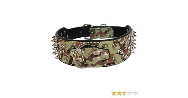 Dogs Kingdom Collar grande de perro con pinchos