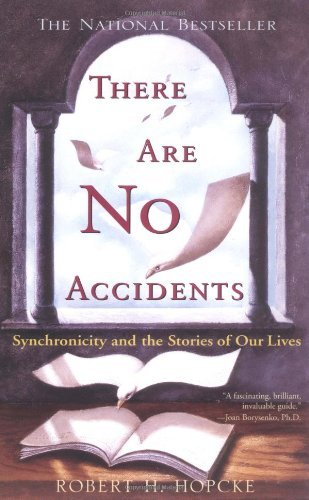 There Are No Accidents: Synchronicity and the Stories of Our Lives by Hopcke, Robert H. (1997) Paperback