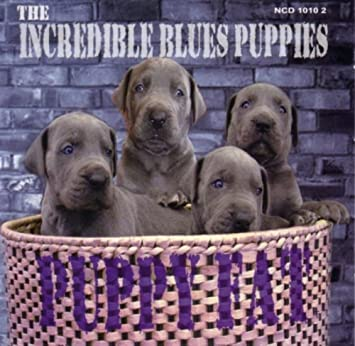 Puppy Fat By Incredible Blues Puppies Amazoncouk Music