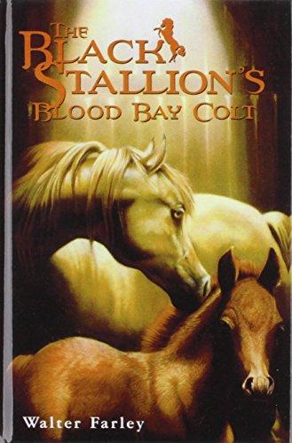 (The Black Stallion's Blood Bay Colt (Bullseye Books))