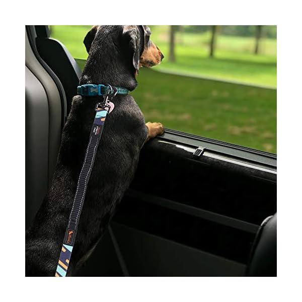 514QMmmm%2BCL CSYY Hunde Sicherheitsgurt, Universal Hundegurt fürs Auto,Hundesicherheitsgurt mit Elastischer Ruckdämpfung und Starke…