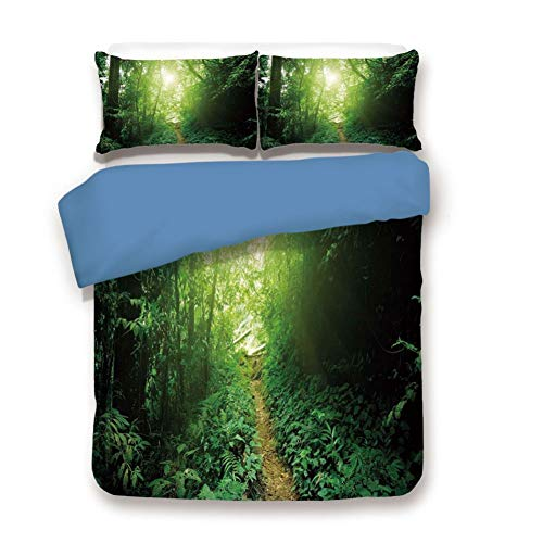 - Duvet Cover Set Queen Size, Decorative 3 Piece Bedding Set with 2 Pillow Shams, A Way in The Jungle of Malaysia Rainforest Fresh Grass Trees Rural Morning Scenery