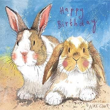 RABBITS BIRTHDAY CARD BIG EARS By ALEX CLARK Amazoncouk Kitchen Home