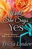 img - for Until She Says Yes (a Jules Vanderzeit novel) (Volume 4) book / textbook / text book