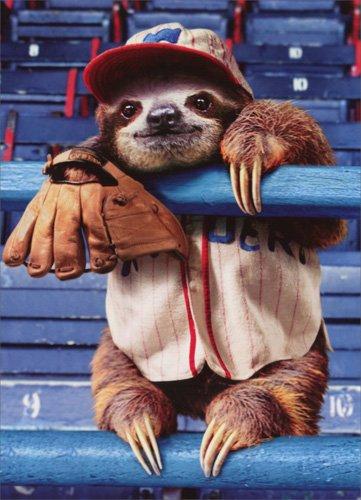 Sloth Baseball Game Birthday Card