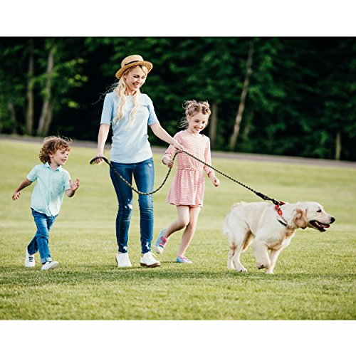 Extra Heavy Duty Rope Dog Leash - 6ft Long, Soft Padded Handle for Comfort, Reflective - Perfect Rope Leash for Medium and Large Dogs