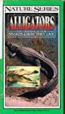 Nature Series: Alligators with Additional Feature Snakes and How They Live