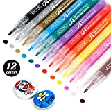 ZEYAR Acylic Paint Pens, Expert of Rock Painting, Extra Fine Point, 12 Colors, Water Based, Permanent & Waterproof Ink, Works on Rock, Wood, Glass, Metal, Ceramic and Non porous Surfaces (12 Colors)