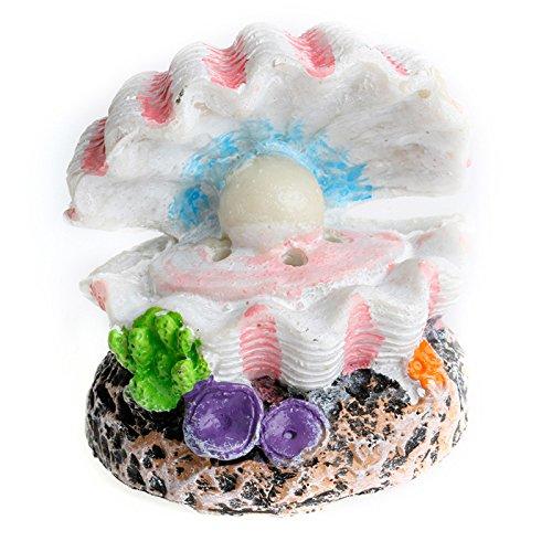 Poity Shell Pearl and Air Stone Aquarium Fish Tank Bubbler Shell Bubbling Ornament Decor