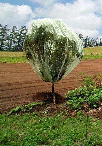 Tierra Garden 50 3530 Haxnicks 6 6 X 6 6 Fruit Tree Cover